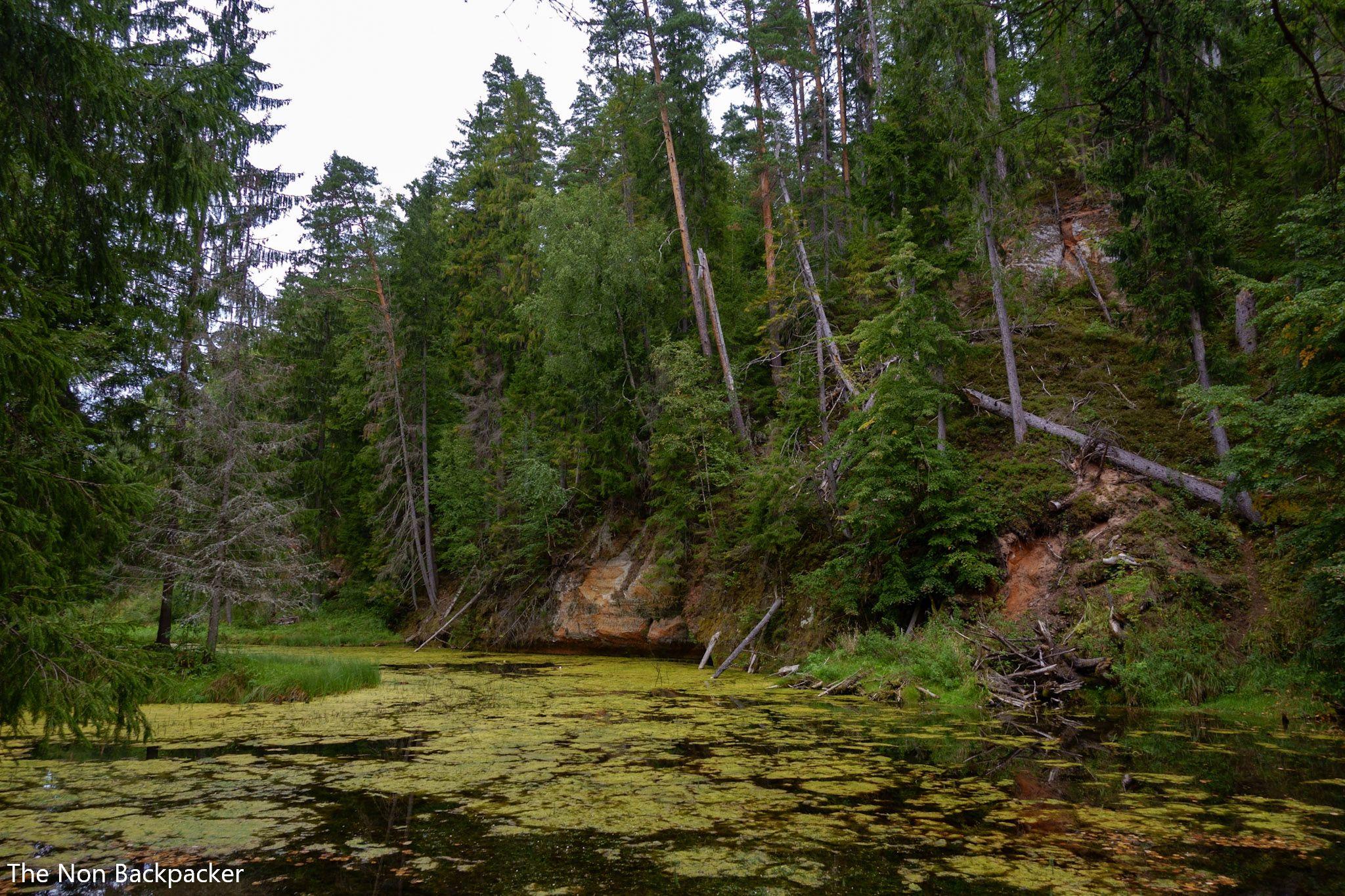 The Cirulisi Nature Trail