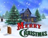 merry christmas (8)