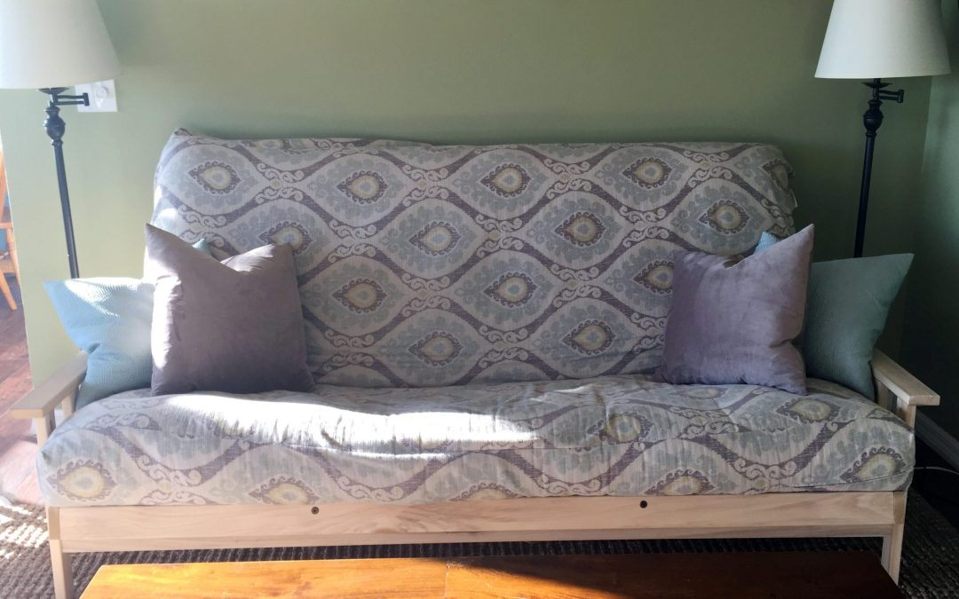 Our Affordable Non Toxic Couch