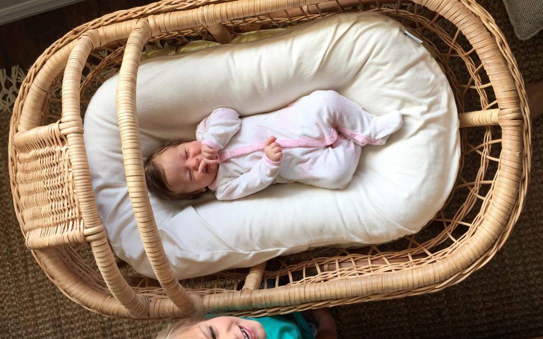 Snuggle Me Organic: Why we LOVE it!