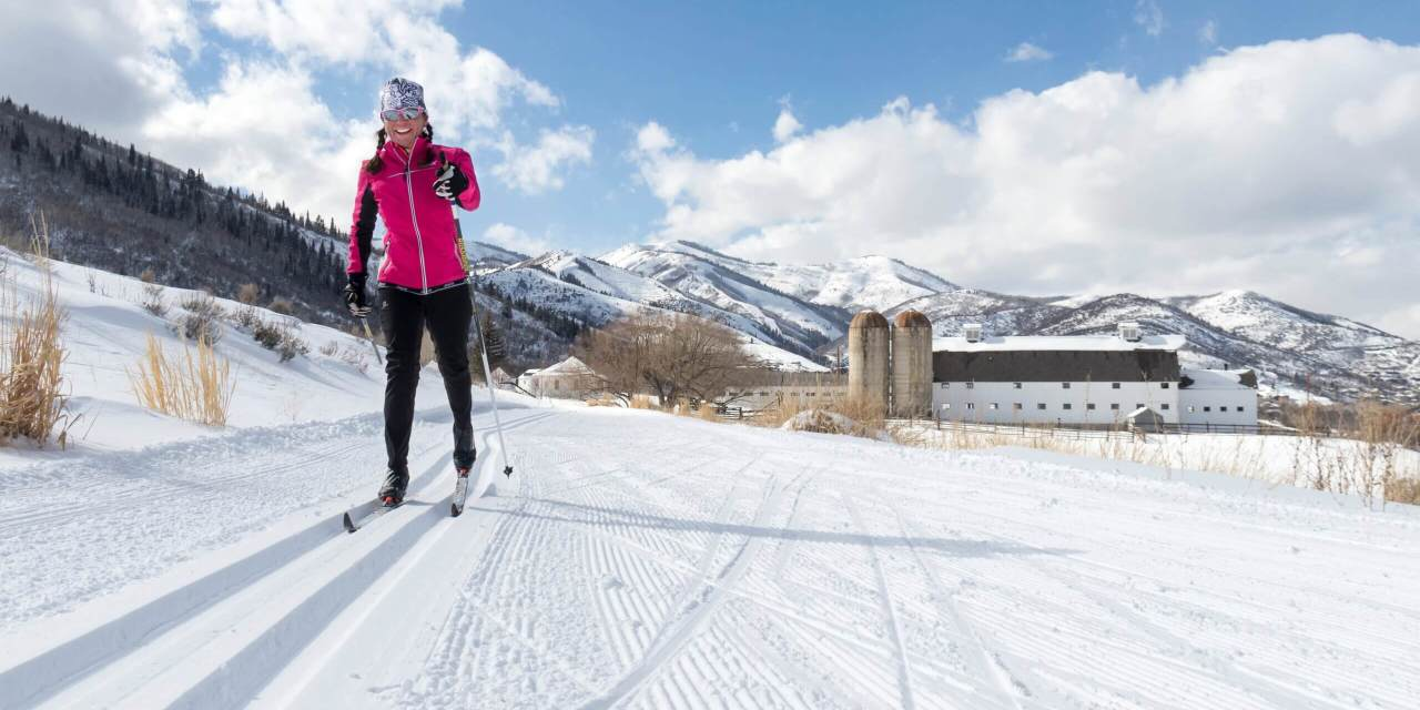10 Tips and Tricks to Make Your Cross Country Experience EPIC!