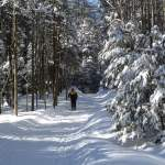 Our Favorite Ski Centers in New York State!