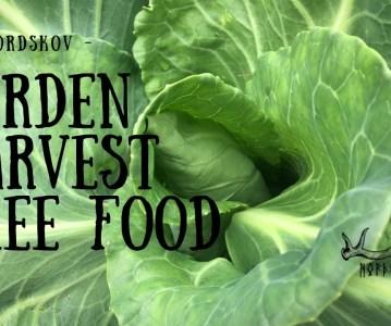 Garden Harvest | Free Food
