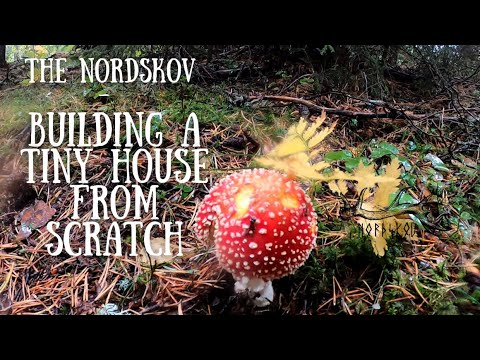 building a tiny house off grid