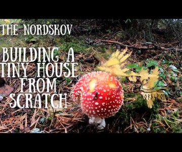 Building a tiny house from scratch | Life off grid in the wilderness
