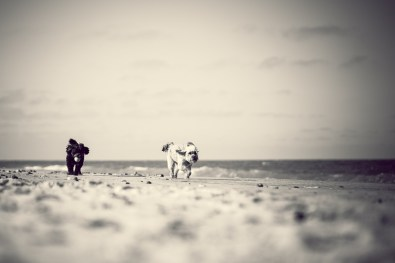 The-Norfolk-Dog-Photographer-0035
