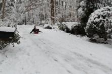Definitely the best sledding hill in town.