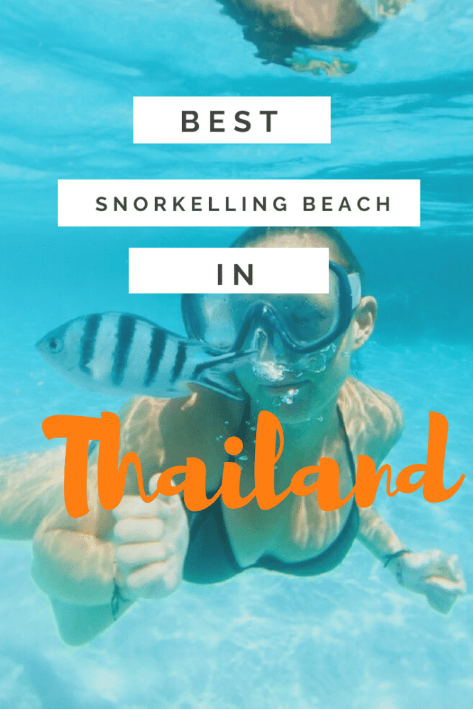 best snorkelling beach on Koh Tao, koh tao beach, sairee beach koh tao, mango beach koh tao, koh tao diving, koh tao scuba diving, big blue diving koh tao, koh nang yuan, koh nang yuan thailand, ko nang yuan, ko nang yuan hotels
