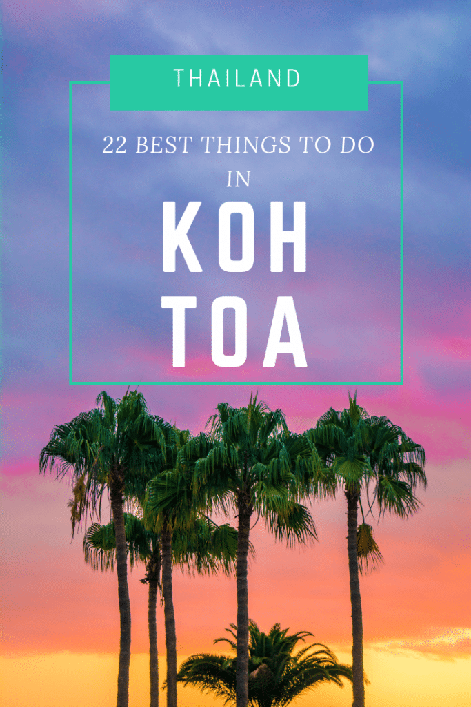 things to do in koh tao, what to do in koh tao, best things to do in koh tao, top things to do in koh tao, things to do in koh tao besides diving, things to do in koh tao when it rains, top 10 things to do in koh tao, fun things to do in koh tao, unusual things to do in koh tao, koh tao scuba diving, shark bay koh tao, ocean view bungalows koh tao, sairee beach koh tao, koh tao beach club