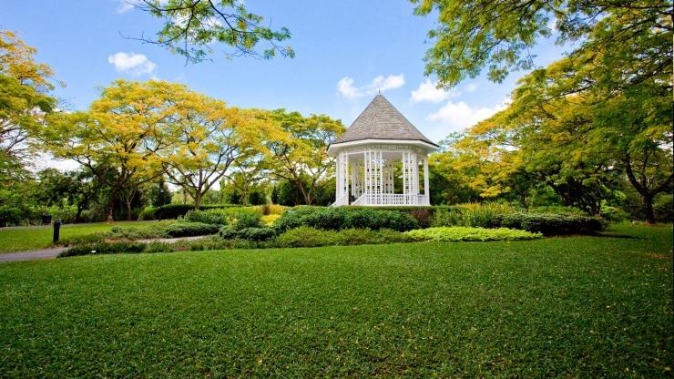 botanic gardens singapore, top thing to do in Singapore