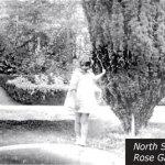 North Star House Rose Garden Betty Foote