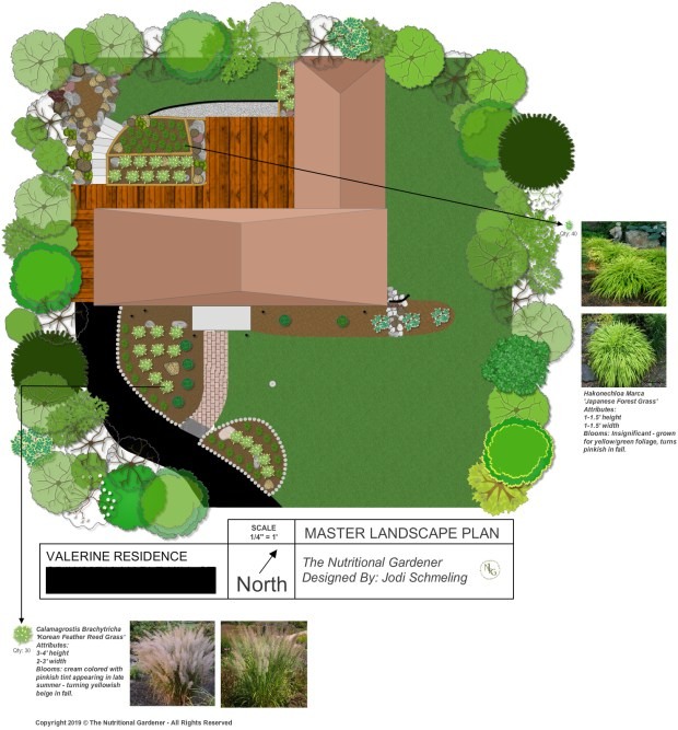A Mid Century Modern Landscape Design Install The Nutritional