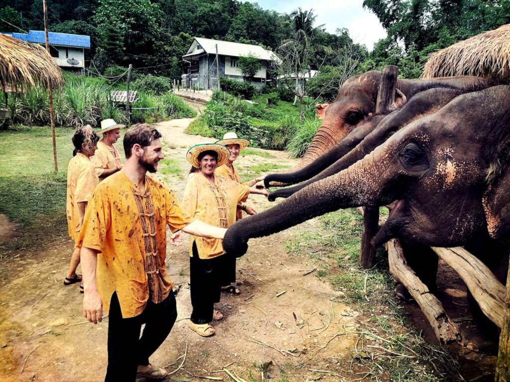Walking with Elephants in Thailand - The Nutty Trekkers