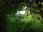 Backyard Greenhouse in Christiana