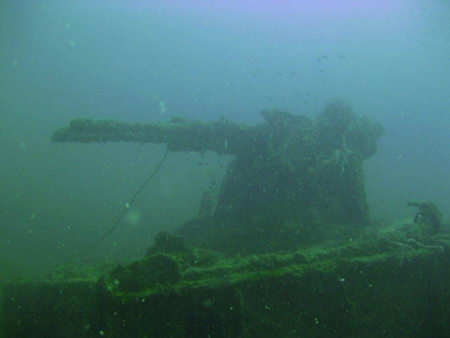 Tioman Wreck Diving Gyoshimaru Gun