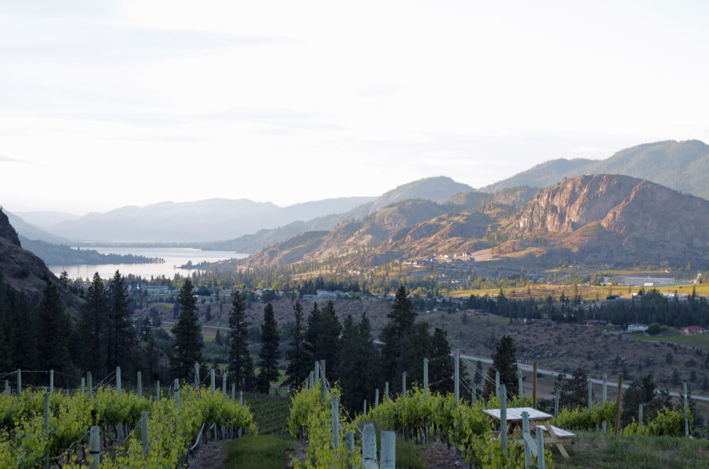 Wallpaper Wanderer: See Ya Later in Okanagan