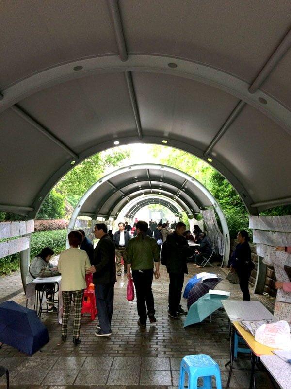 Shanghai Spring - Marriage Market sheltered