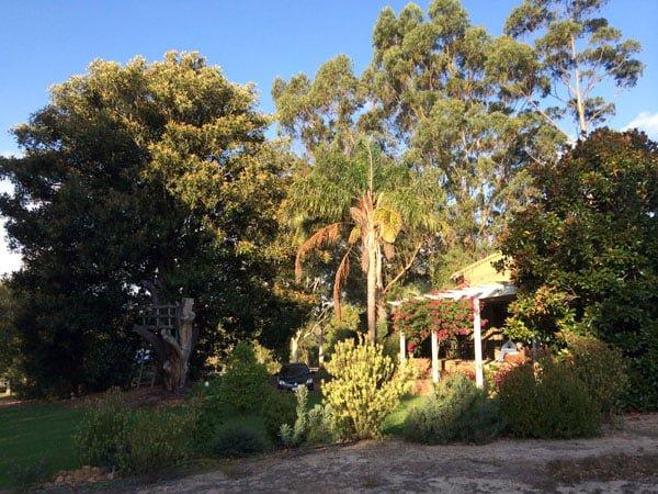 Perth Margaret River Amon Ra Hidden in Trees