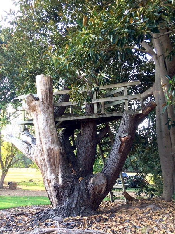 Perth Margaret River Amon Ra Treehouse