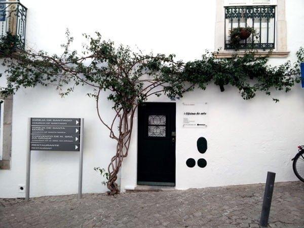Portugal - Tavira Climbing Tree
