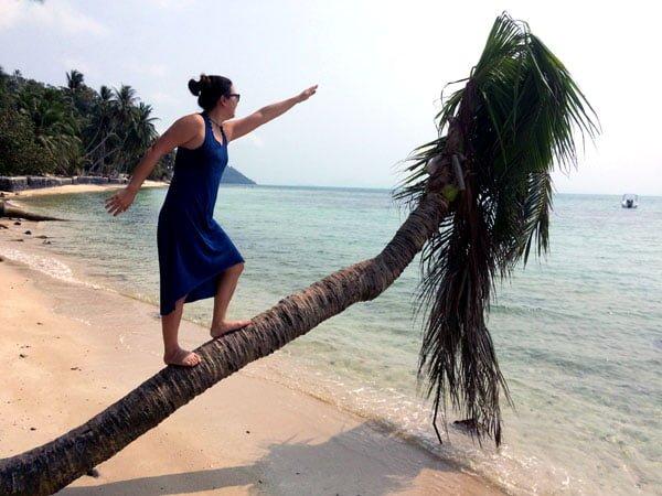 Koh Samui - RNavigator Coconut Tree