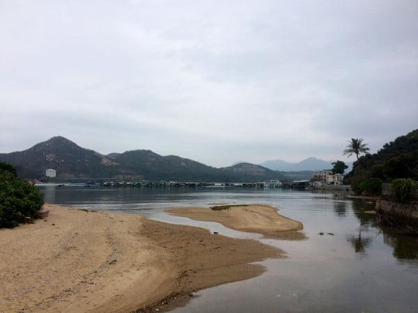 Hong Kong Lamma Island - Coastline Tree