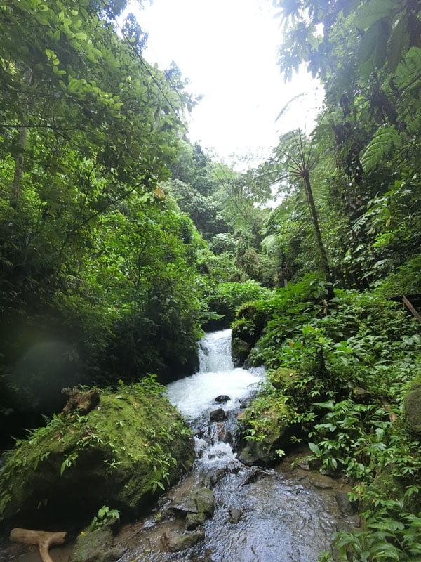 Bali Casio Canyon Tubing Waterfall