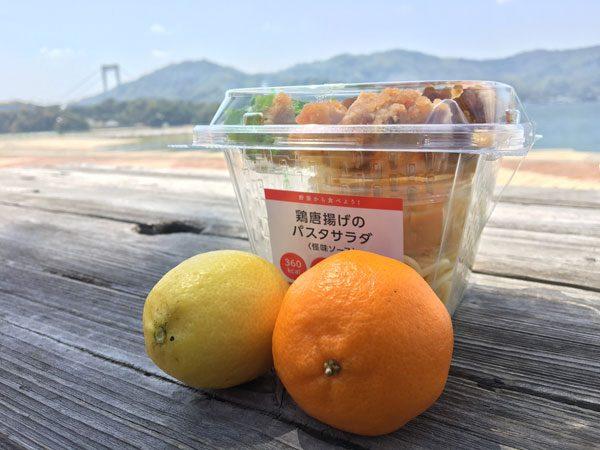 Shimanani Kaido - Hakatajima Lunch
