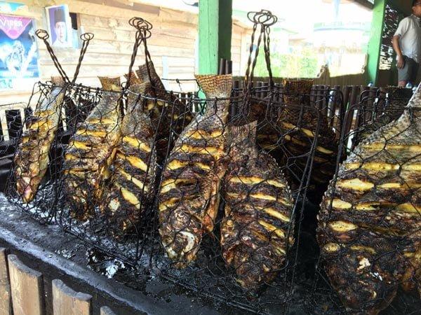 South Sumatra Ranau Lake Fried Fish Cooking