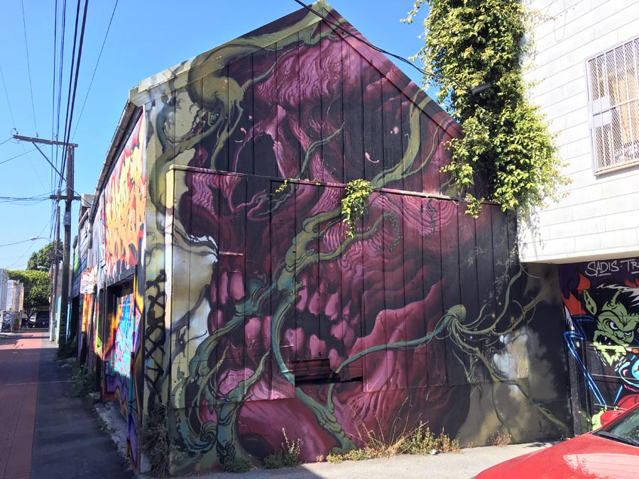 San Francisco Street Art Purple Skull