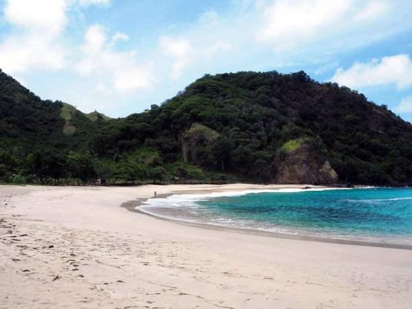 Flores Koka Beach Shore Lucie