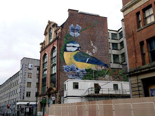 Manchester Street Art Faunagraphic
