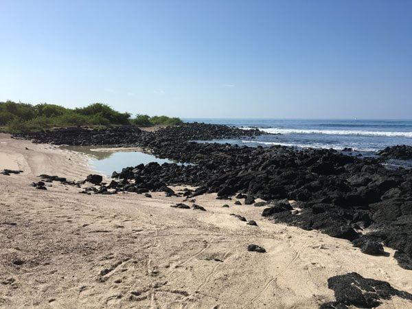 Galapagos Santa Cruz Charles Darwin Beach