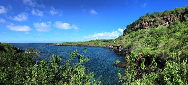 Galapagos San Cristobal Tijeretas