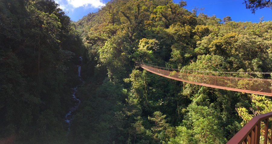Panama Boquete Tree Top Trek Bridge Waterfall