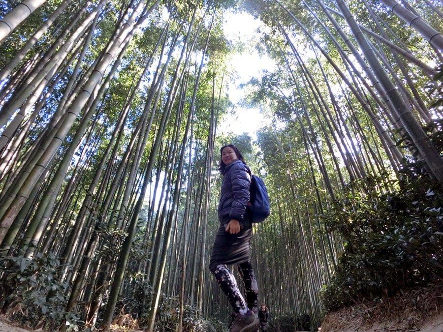 Damyang Bamboo Forest Selfie