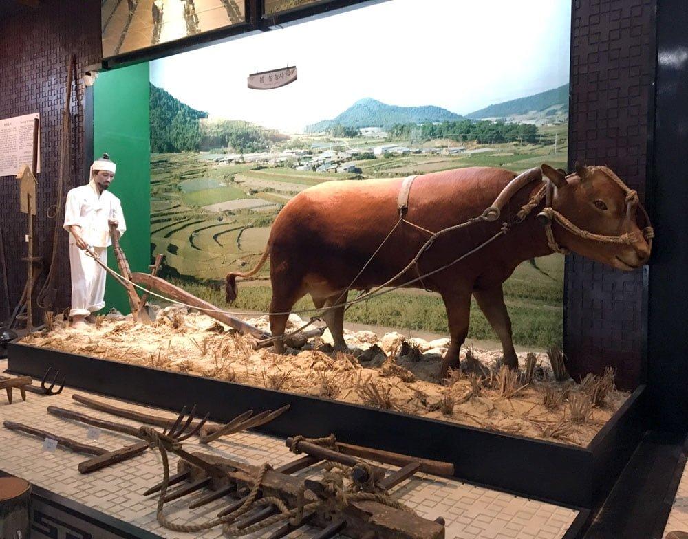 Gwangju Folk Museum Farming