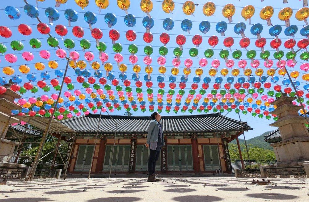 Suncheon Seonamsa Lanterns Me