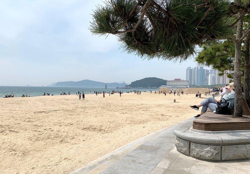 Busan Haeundae Beach Shade