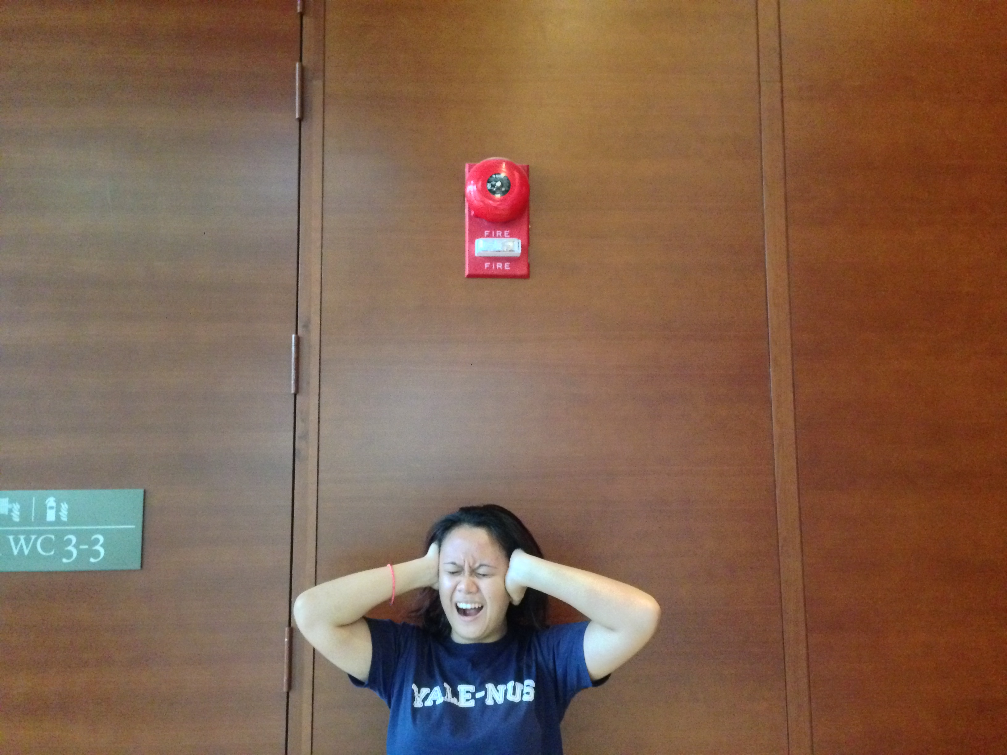Fire in the House: Rectifying our Fire Safety Policies