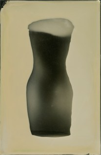 venusseriesfigure17photogram