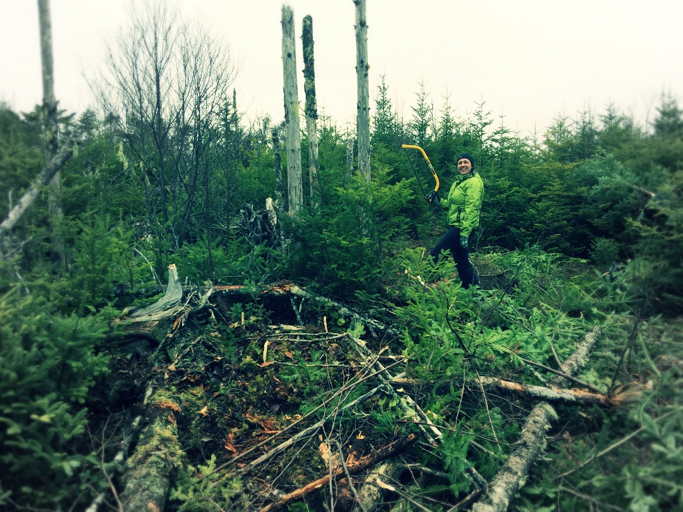 Off-The-Grid-Trail-Blazing-with-Buck-Saw