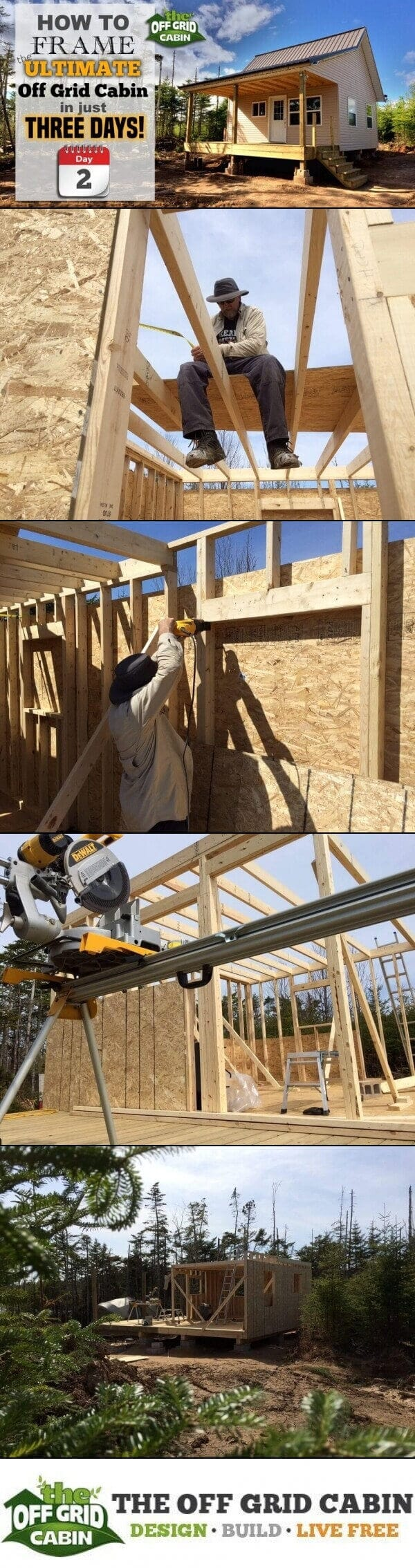 Framing The Cabin Walls In 3 Days Off Grid Cabin Pinterest Image