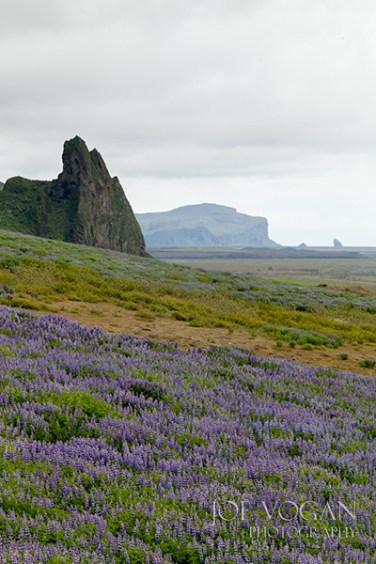 View from Vik Church, Vik i Myrdal, Iceland