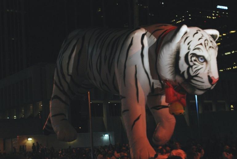 9News Tiger