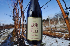 A bottle of 2014 Pinot Noir sitting on a winter vine branch out in the snow