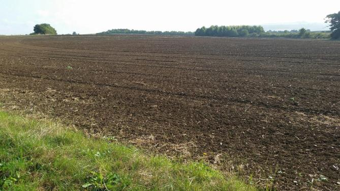 A ploughed field which was full of rapeseed earlier in the year