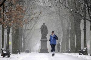 Boston Jogging in Show