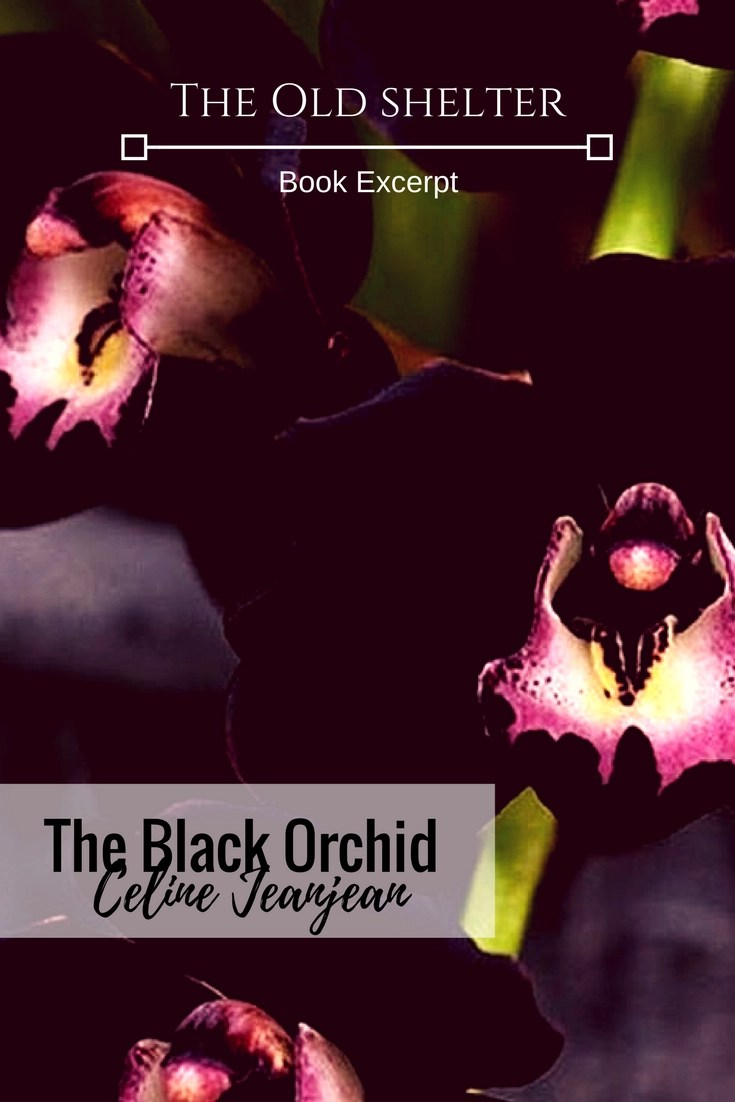 THE BLACK ORCHID (Celine JeanJean) Rary isn't a girl anymore. As she discoveres herself as a woman, while investigating the murder of a few of her friends, her friendship with Longinus is put at the test