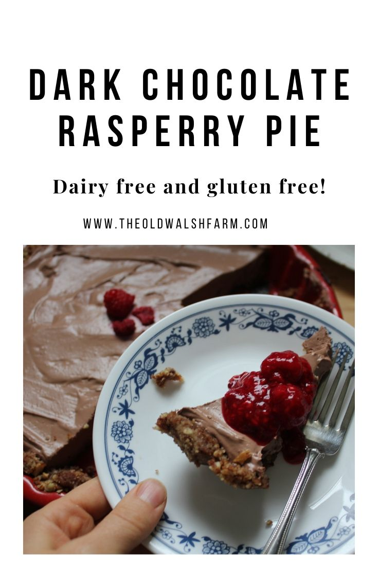 Dark Chocolate Raspberry Tofu Pie - Grain & dairy free